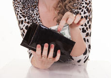 Young woman holding dollars in her wallet Stock Photography