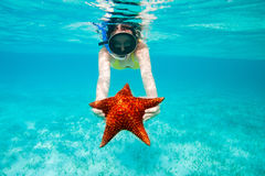 Young woman holding a giant starfish Stock Photos