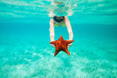 Young woman holding a giant starfish Stock Photo