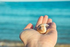 Young Woman Holding in Hand Beautiful Spiral Sea Shell. Blue Turquoise Water Background Golden Sunlight. Soft Natural Light Stock Photos