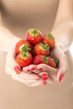 Young Woman Holding a Handful of Fresh Strawberries Royalty Free Stock Images