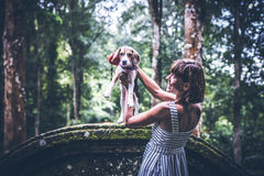 Young woman holding her puppy beagle dog in nature of tropical Bali island, Indonesia. Young woman holding her puppy beagle dog in nature of tropical Bali Royalty Free Stock Photos