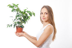 Young woman holding houseplant, isolaterd on white Stock Photos