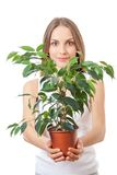 Young woman holding houseplant, isolaterd on white Stock Photography