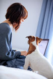 Young woman holding laptop with dog Royalty Free Stock Photo