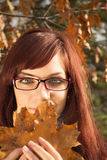 Young woman holding leaves. Young womanholding big autumn orange leaves royalty free stock image