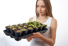 Young woman holding a lettuce seedling Stock Photo