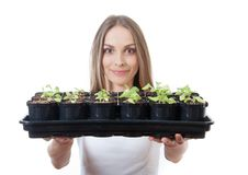 Young woman holding a lettuce seedling Royalty Free Stock Photos