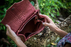 Young woman holding a luxury handmade snakeskin python handbag. Sunny day. Expensive clutch. Close up of woman hands Stock Photography