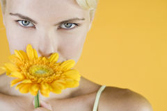A Young Woman Holding An Orange Flower Royalty Free Stock Photos