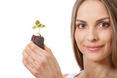 Young woman holding plant,  coleus sprout Stock Image