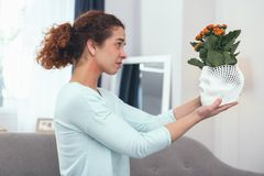 Young woman holding a plant in outstretched arms. Life choices. Young woman felling sorry saying goodbye to her favourite plants entailing her to allergic Royalty Free Stock Photography