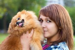 Young woman holding a pomeranian Royalty Free Stock Photography