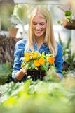 Young woman holding potted flowering plant Royalty Free Stock Photography