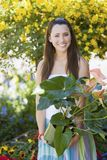 Young Woman Holding Potted Plant Stock Photos