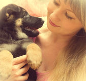 Young woman holding a  puppy Royalty Free Stock Photography