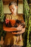 A young woman is holding a red cockerel. Chicken farm. The concept of tasty and healthy ecological food.  Royalty Free Stock Photography