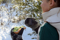 Young woman holding sandwitch and coffee mug in winter forest. Royalty Free Stock Image
