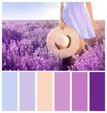 Young woman holding straw hat in lavender field. Natural color palette for interior or fashion design. And art royalty free stock photography
