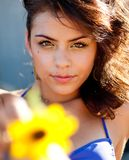 Young woman holding a sunflower Stock Photography