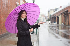 Young woman holding up her umbrella Royalty Free Stock Photos