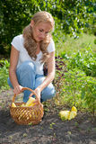 Young woman holding vegetables in the garden Stock Photo