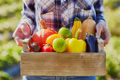 Young woman holding wooden crate with vegetables Royalty Free Stock Photos