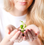 Young woman holding young plant in her hands Stock Photos