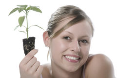 Young woman holding young sprout in the hands. Royalty Free Stock Photography