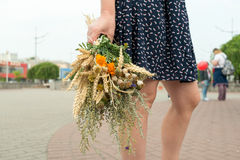 Young woman holds motley grass bouquet during Macovei celebratio Stock Photos