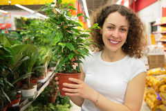 Young woman holds pot with plant in shop Stock Photos