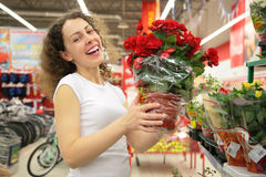 Young woman holds pot with rose in shop Stock Photos