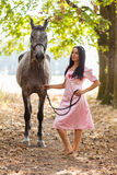 Young woman with a horse Royalty Free Stock Photos