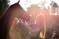 Young woman with horse Stock Image
