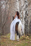 Young Woman And Horse Royalty Free Stock Photography