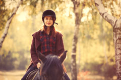 Young woman and horse Royalty Free Stock Images