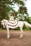 Young woman on a horse. Horseback rider, woman riding horse Stock Image