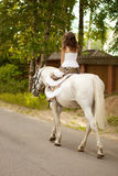 Young woman on a horse. Horseback rider, woman riding horse Stock Photos