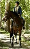 Young woman horse riding in the forest royalty free stock photo
