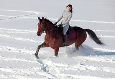 Young woman horseback riding on a snowy glade Stock Photos