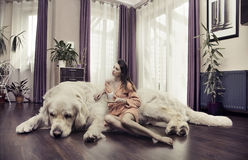 Young woman hugging big dog Stock Images