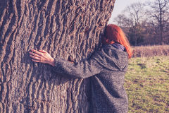 Young woman hugging a big tree in winter Royalty Free Stock Photography