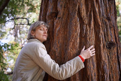 Young woman hugging a tree Stock Image