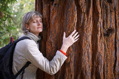 Young woman hugging a tree Stock Images