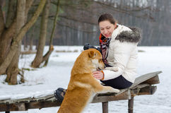Young woman in a jacket and with a camera stroking her red dog in the winter. Stock Image