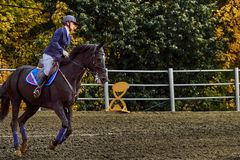 Young woman jockey in white blue dress and black boots, takes part in equestrian competitions.  royalty free stock image