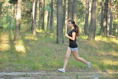 Young Woman Jogging in forest Royalty Free Stock Image