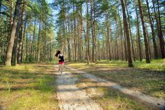 Young Woman Jogging in forest Stock Image