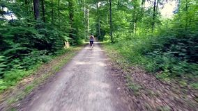 Young woman jogging through forest stock video