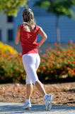 Young woman jogging in the park Stock Images